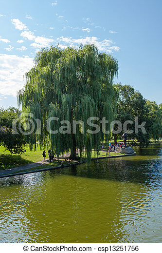 View of the Common park lake in Boston - csp13251756