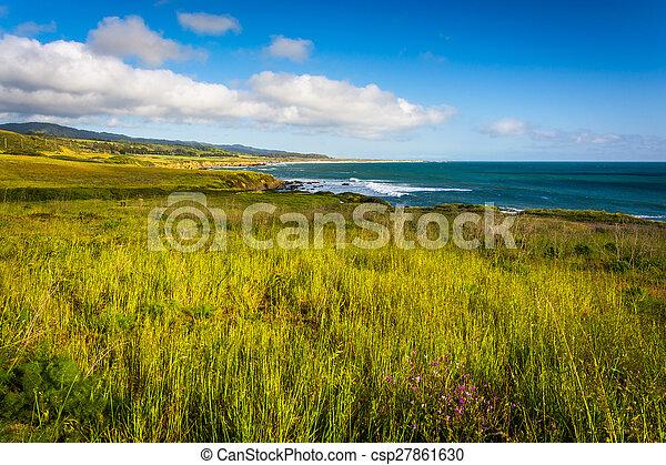 View of the Pacific Coast in Pescadero, California. - csp27861630