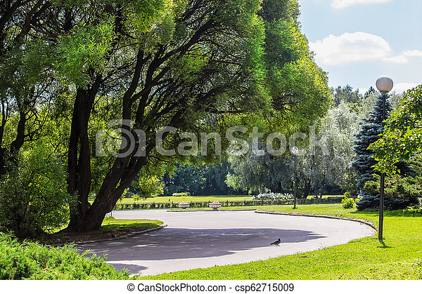 view of the Park with walking paths - csp62715009