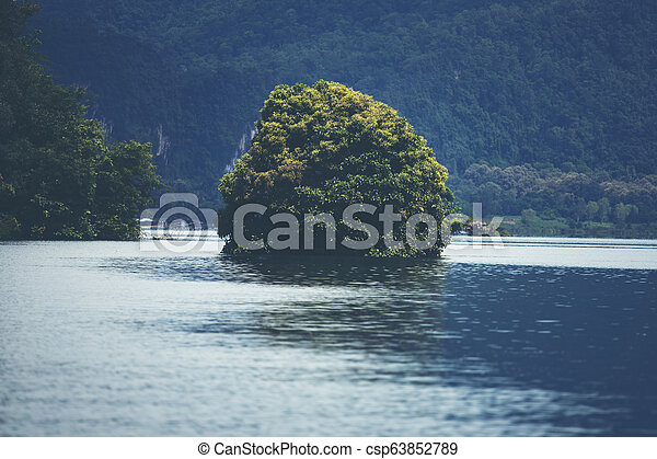 view of tropical forest with lake, Thailand - csp63852789