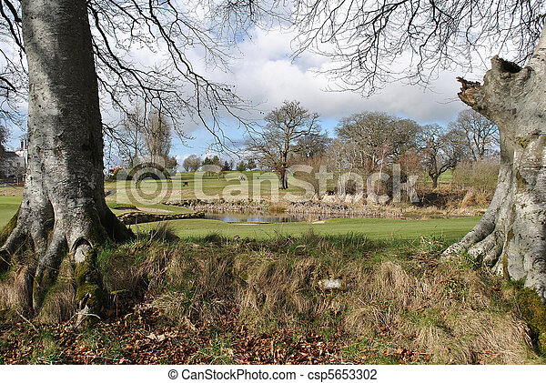 view on a golf course - csp5653302