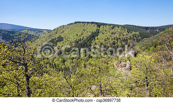 View over the Harz in Germany - csp36897738