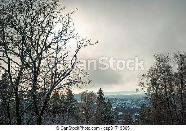 View to Holmenkollen, Oslo over trees in winter - csp31713365