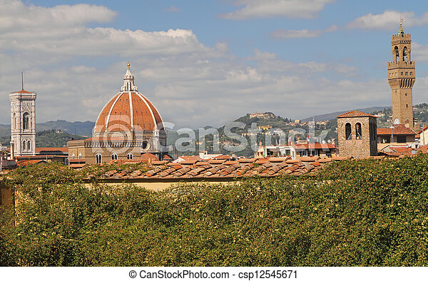 view with landmarks of Florence - csp12545671