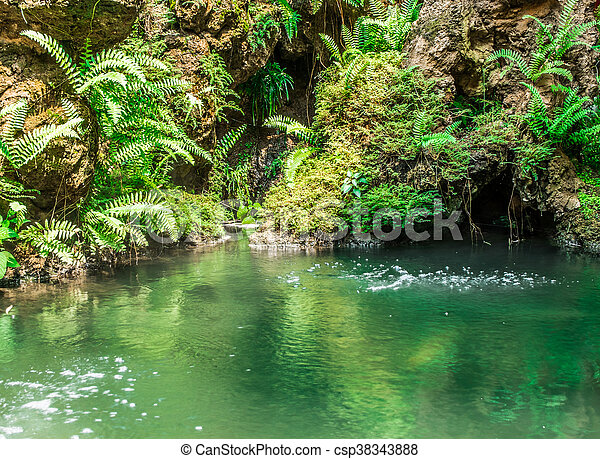 Waterval In Tuin : Custom tuin view moderne muur papier waterval landschap d natuur