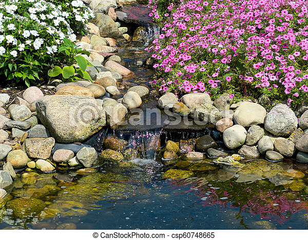 Waterval In Tuin : Vijver waterval tuin rots. roze zomer tuin op planten