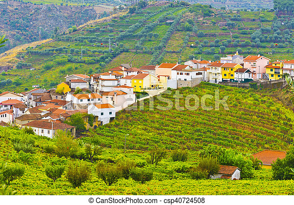 Village Surrounded by Vineyards - csp40724508