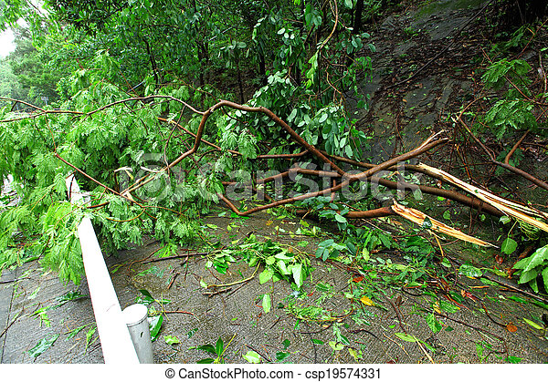 ville, après, typhon, demaged - csp19574331