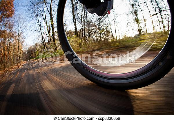 ville, parc bicyclette, autumn/fall, équitation, agréable, jour - csp8338059