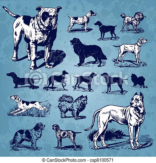 vindima, jogo, cachorros, (vector) - csp6100571