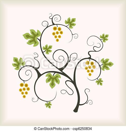 Viña de uva. - csp6250834