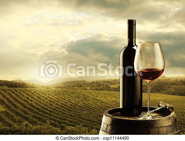 Vineyard at sunset - csp11144490