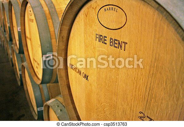 Vineyard in Chile - csp3513763