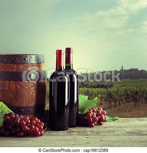 Vineyard - csp16612389