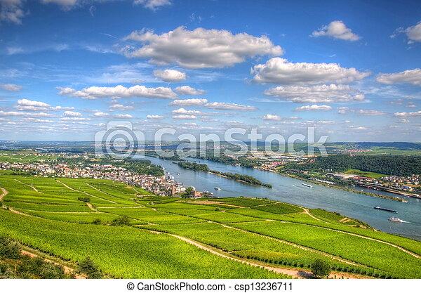 Vineyard Ruedelsheim Hessen Germany Stock Photography Search - Hessen germany