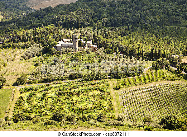 Vineyards and Estate In Umbria - csp8372111