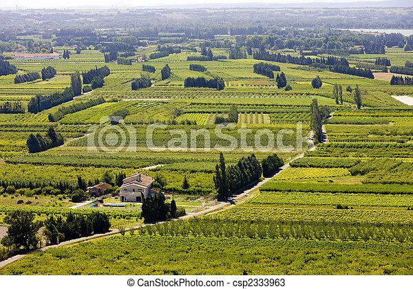 vineyards near Boulbon, Provence, France - csp2333963