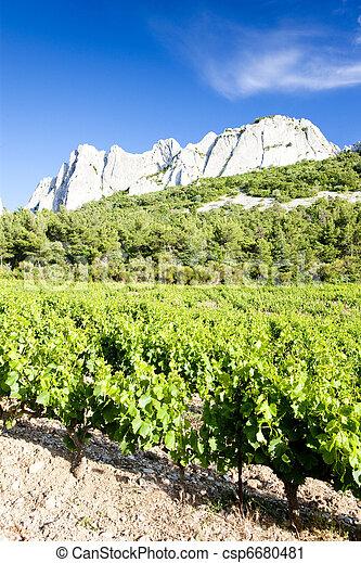vineyards near Gigondas at Col Du Cayron, Provence, France - csp6680481