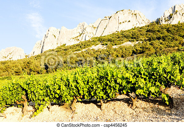 vineyards near Gigondas Provence, France - csp4456245