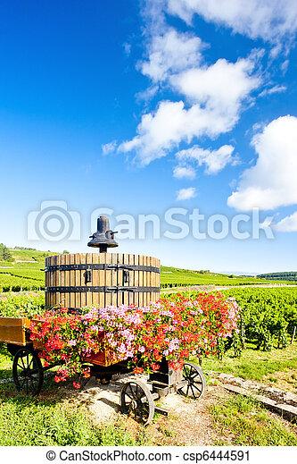 vineyards of Cote de Beaune near Pommard, Burgundy, France - csp6444591