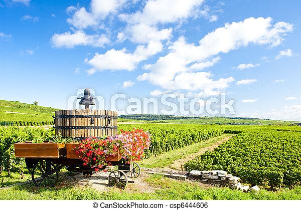 vineyards of Cote de Beaune near Pommard, Burgundy, France - csp6444606