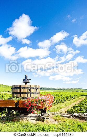 vineyards of Cote de Beaune near Pommard, Burgundy, France - csp6444539