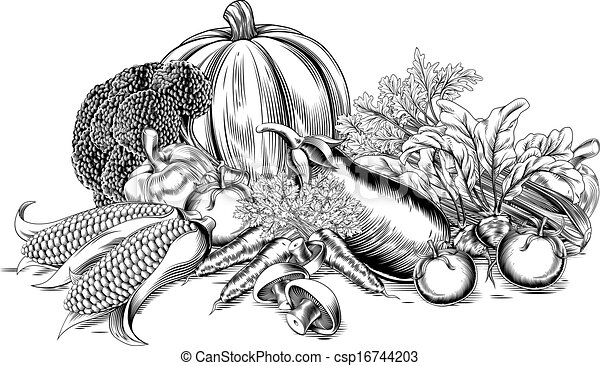 vinhøst, grønsager, retro, woodcut - csp16744203