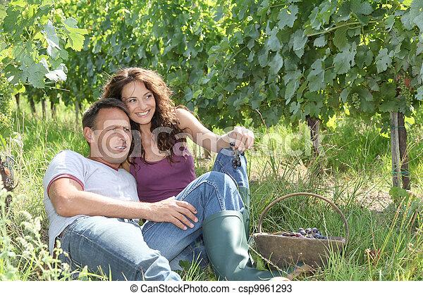 vinhedo, par, relaxante - csp9961293