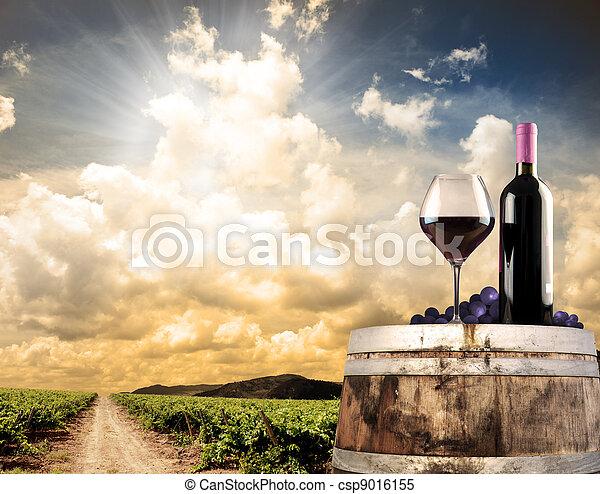vinhedo, vida, ainda, contra, vinho - csp9016155