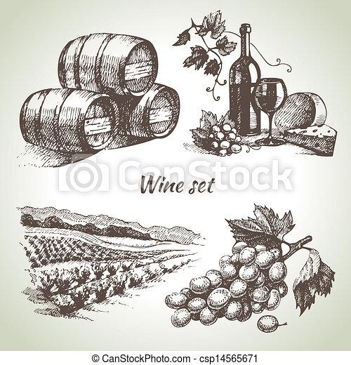 vino, set, vettore, mano, disegnato - csp14565671