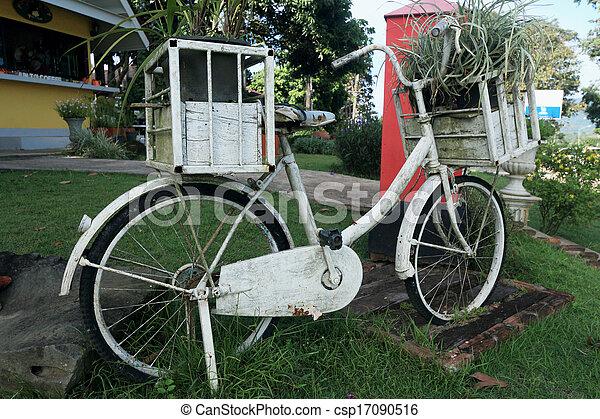 vinobraní, bicycle. - csp17090516