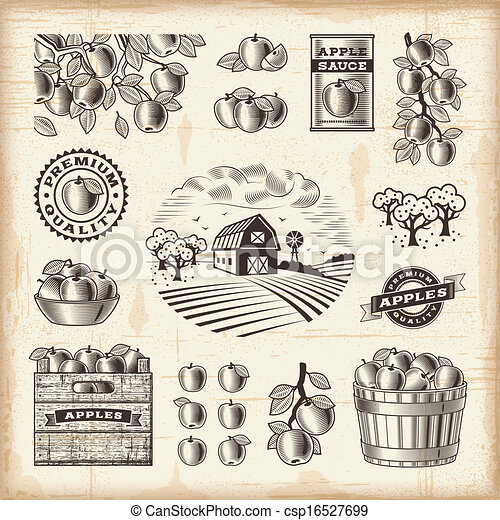 Vintage apple harvest set - csp16527699