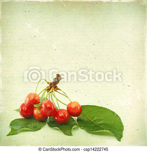 Vintage background with berries cherry texture old paper grunge, for any of your project - csp14222745