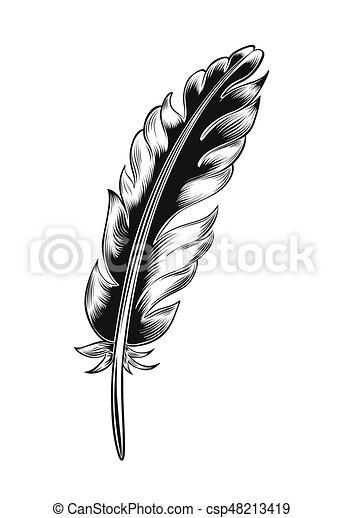 Vintage black feather. - csp48213419