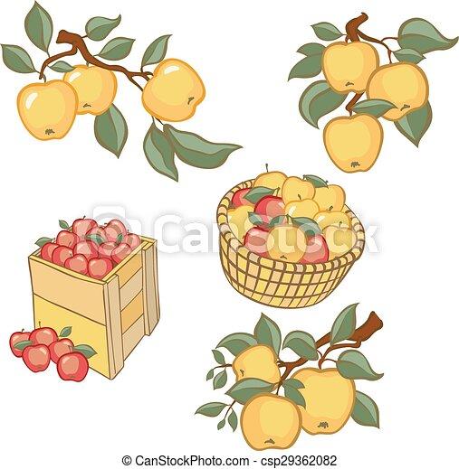 Vintage colorful apple harvest set. - csp29362082