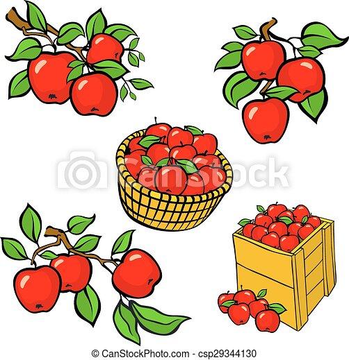Vintage colorful apple harvest set. Fully editable EPS10 vector. - csp29344130