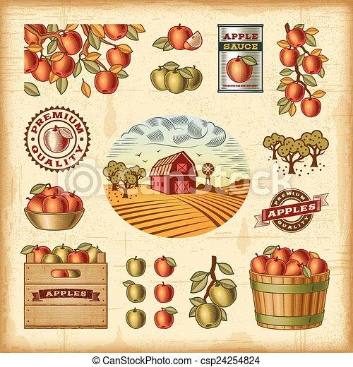 Vintage colorful apple harvest set - csp24254824