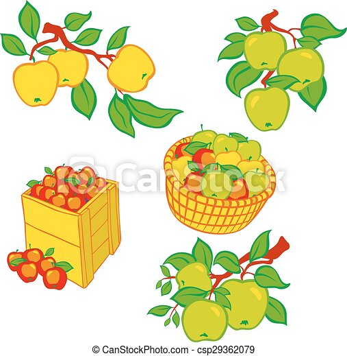 Vintage colorful apple harvest set. - csp29362079