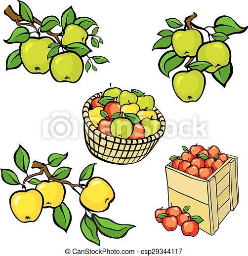 Vintage colorful apple harvest set. - csp29344117