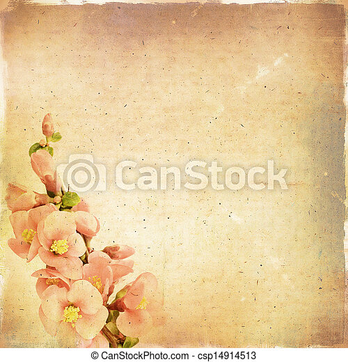 Vintage floral background with pink flowers on a brown background old paper grunge, for any of your project - csp14914513