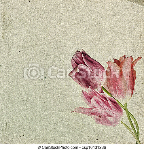 Vintage floral background with tulips on the background of old grunge paper, for each of your project - csp16431236