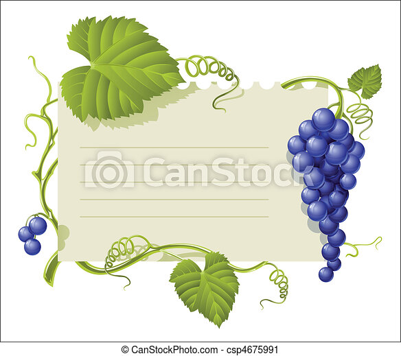 vintage frame with cluster grapes and green leaf - csp4675991