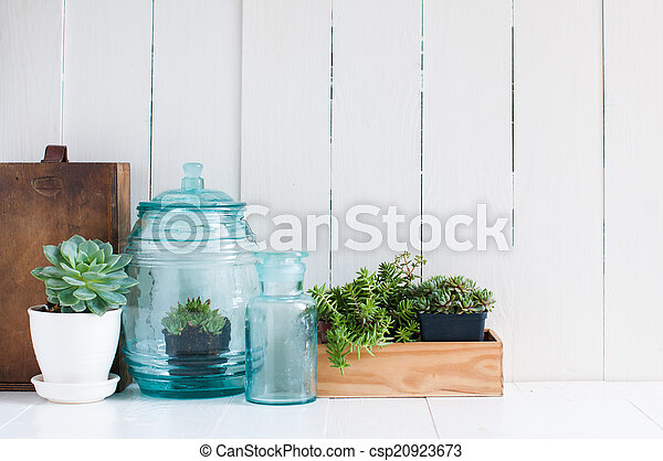 Vintage home decor: houseplants, green succulents, old... picture ...