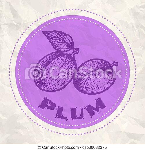 Vintage logo of plum - csp30032375