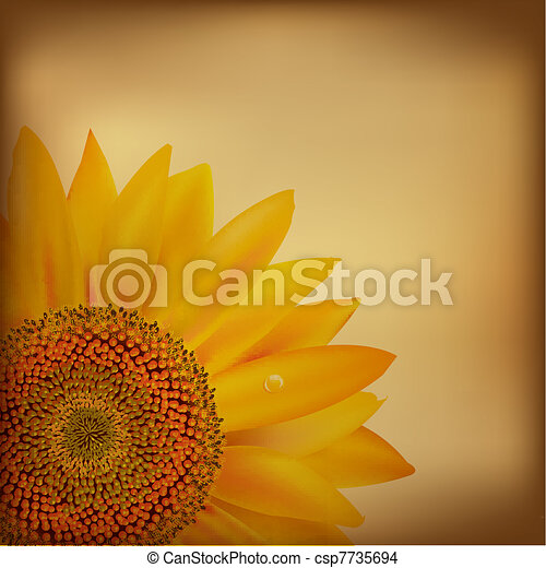 Vintage Paper With Sunflower - csp7735694