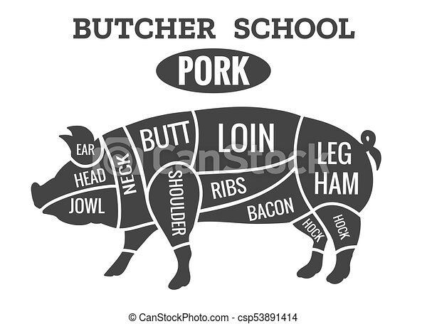 vintage pork butcher diagram vintage pig cuts pork butcher rh canstockphoto com pig meat diagram bacon pig meat diagram bacon