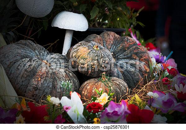 Vintage pumpkins and fruit - csp25876301