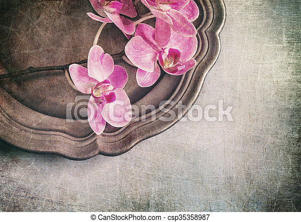 Vintage styled still life with orchids - csp35358987