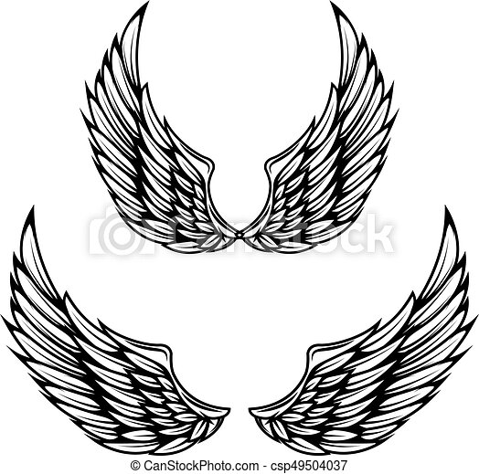 vintage wings isolated on white background design elements rh canstockphoto com wind vectors idaho wing vector designs