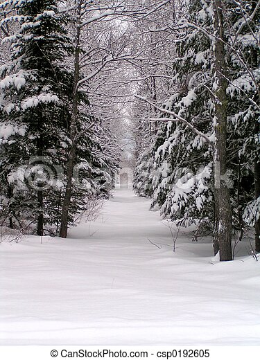 vinter landskap - csp0192605